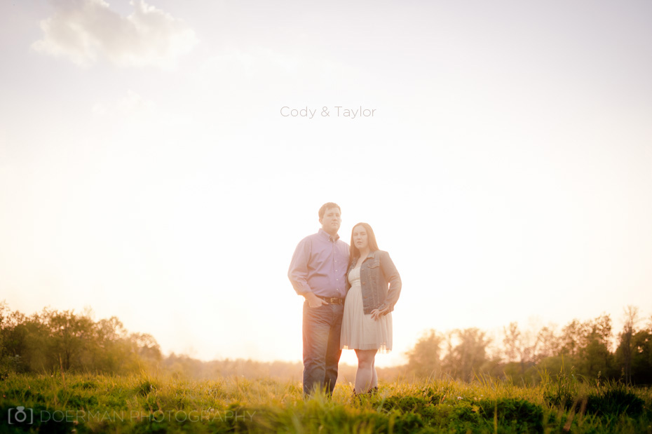 engagement photos nashville