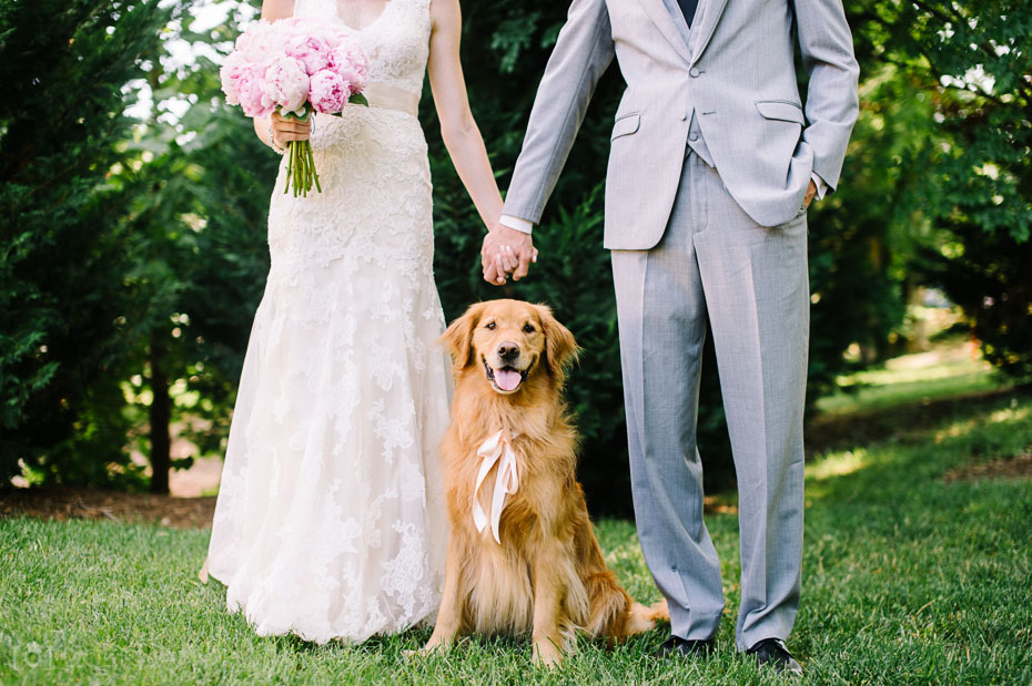 Bride and groom with their golden retriever dog on wedding day