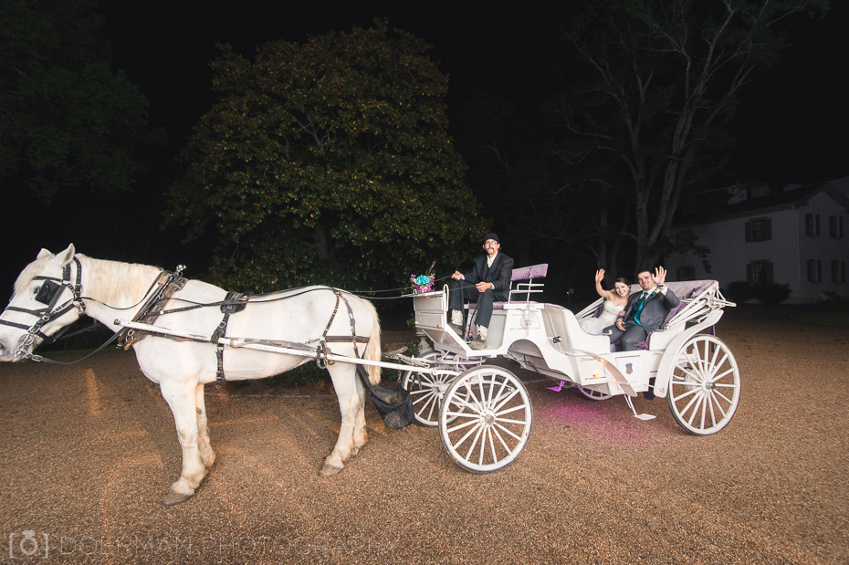 horse drawn carriage wedding