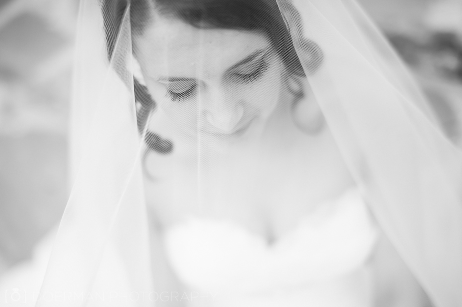 bride veil black and white
